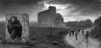Nick Brandt, 'Factory With Chimpanzee, 2014', 2014