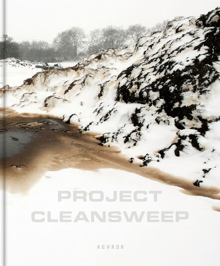 Dara McGrath, 'Project Cleansweep ', 2020