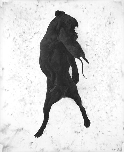 Lucienne Rickard, 'Ratter', 2015