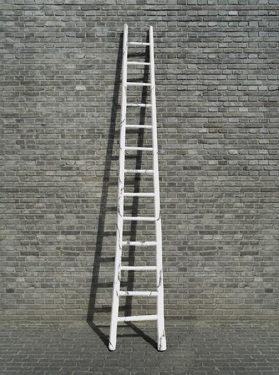 Zhao Zhao, 'Chinese Ladder', 2019