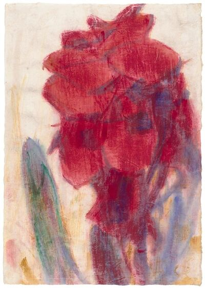 Christian Rohlfs, 'Rote Canna Indica', not dated