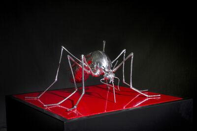 Mauro Corda, 'The Mosquito'