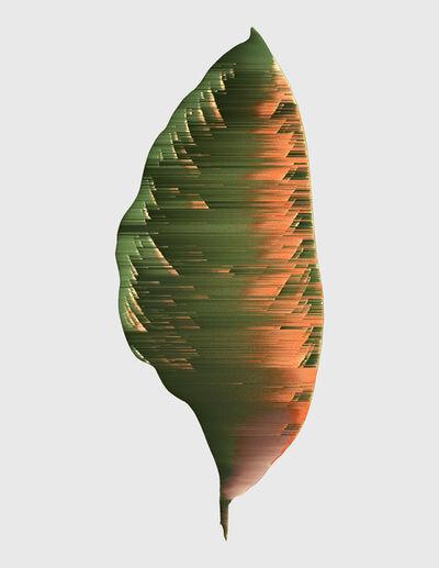 Andrea Wolf, 'Calathea Regalis, var. 020', 2020