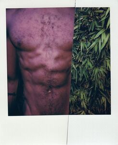 Stuart Sandford, 'Polaroid Collage XL', 2020