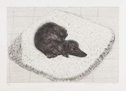 David Hockney, 'Dog Etching No. 12, from Dog Wall', 1998