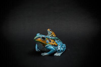 Kensuke Fujiyoshi, '15. Sky blue Frog', 2017