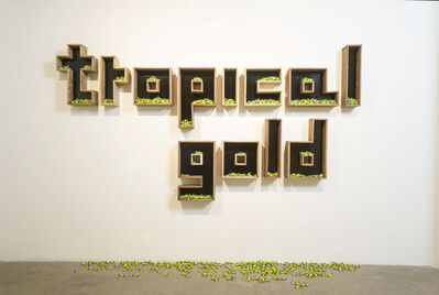 Andres Matias Pinilla, 'Tropical Gold', 2015
