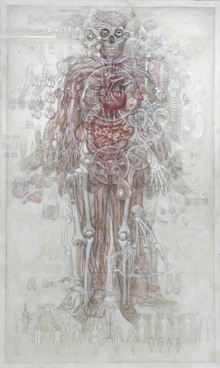 Casey Cripe, 'Human Anatomy (v.1.4)', 2015