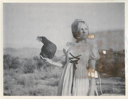 Stefanie Schneider, 'Victorian Falcon', 2016