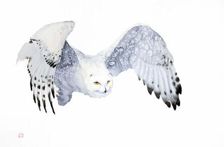 Karl Martens, 'Snowy Owl'