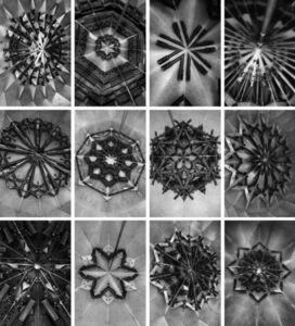 Mircea Cantor, 'Holy Flowers', 2010