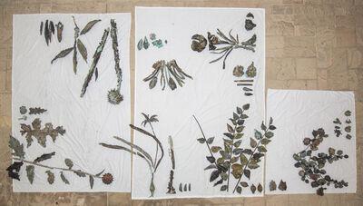 Abbas Akhavan, 'Study for a Hanging Garden', 2013-2014