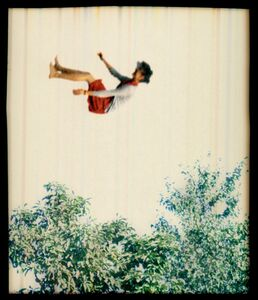 Elijah Gowin, 'Falling in Trees 1', 2006