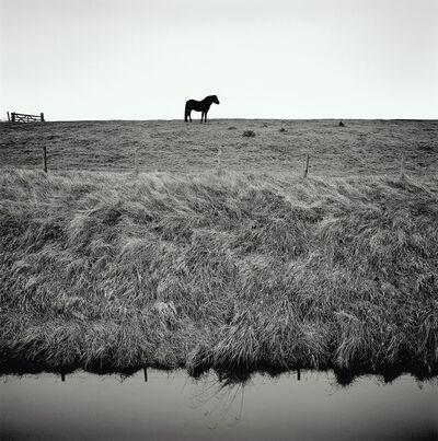 Paul Hart, 'Sea Bank', 2016