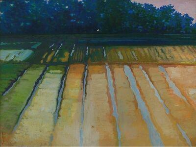 Wan-Chun Wang, 'Ridge-Bordered Plots', 2009
