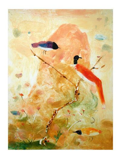 Valentina DuBasky, 'Adagio Mountain Birds', 2013