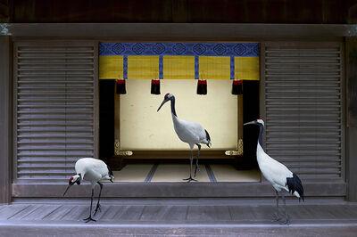 Karen Knorr, 'Path To Enlightenment, Meiji, Jingu Shrine Tokyo', 2015