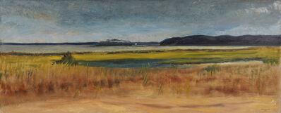 Nelson White, 'Mashomack Point', 2016