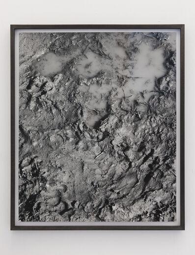 Talia Chetrit, 'Mud', 2011
