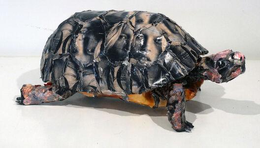 Will Kurtz, 'Tortoise', 2017-2019
