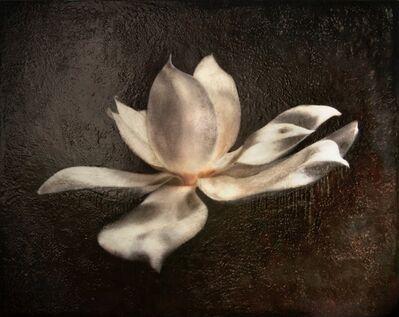 Maggie Hasbrouck, 'Glass Magnolia', 2015