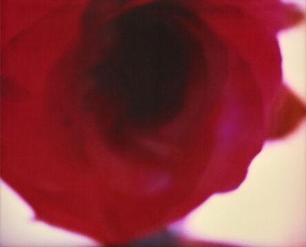 Emma Summerton, 'A Rose Is A', 2009