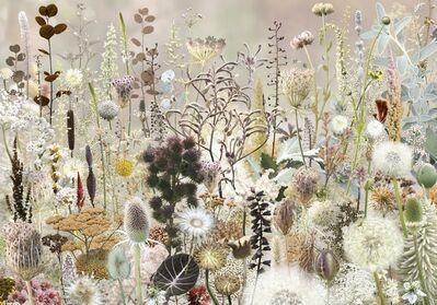 Ruud Van Empel, 'Floresta #2', 2018