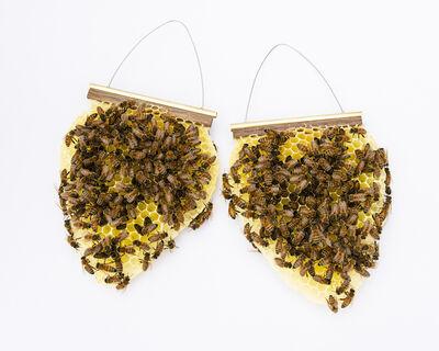 Tom Muir, 'Beekeeper Earrings', 2019