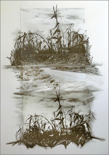 Shannon Reece, 'Bienes Raices Milpa', 2008