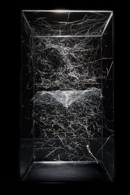 Tomás Saraceno, 'Hybrid solitary semi-social musical instrument NGC 2936: built by a single steatoda grossa, five weeks and a single cyrtophora moluccensis, one week,', 2014