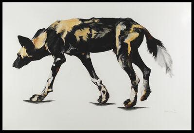 Rose Corcoran, '27. Large African Wild Dog II', 2019