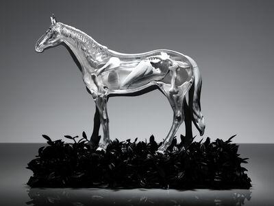 Omar Torres, 'HORSE', 2015