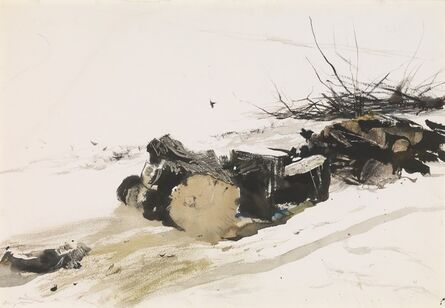 Andrew Wyeth, 'Silver Maple', 1954