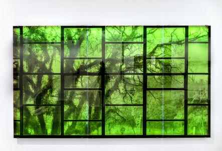 Veronika Kellndorfer, 'Oscar Niemeyer with Tree', 2016