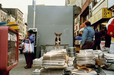 Jeff Mermelstein, 'New York City 1993', 1993