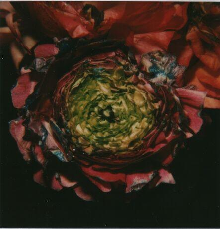 Nobuyoshi Araki, 'Flower', ca. 2009