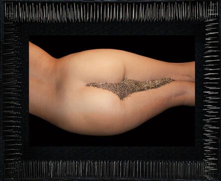 Lidzie Alvisa, 'Paisaje / Landscape', 2001