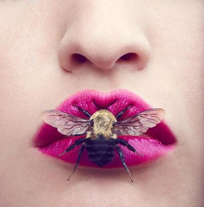 Amanda Pratt, 'Beauty Bug', 2019