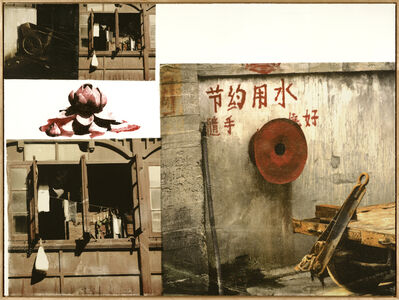 Robert Rauschenberg, 'Lotus V (The Lotus Series)', 2008