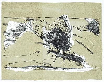 Noemi Spadaro, 'Mallditas moscas', 2013