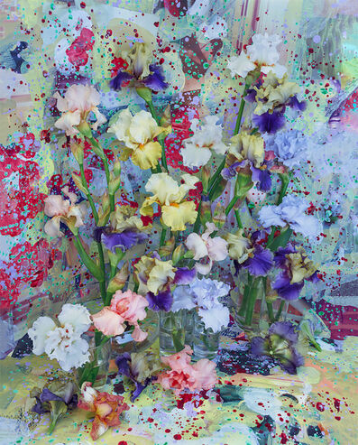 Christopher Beane, 'Two Toned and Mixed Bearded Iris (Baroquecoco Series)', 2019