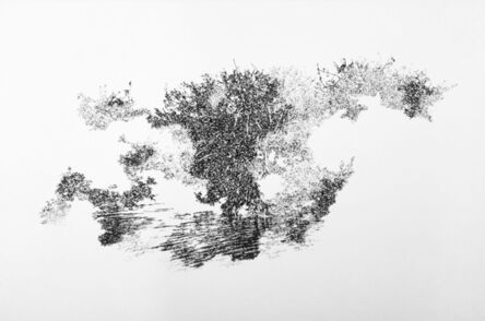 Magnus Sigurdarson, 'Wrath of God (Everglades I)', 2017