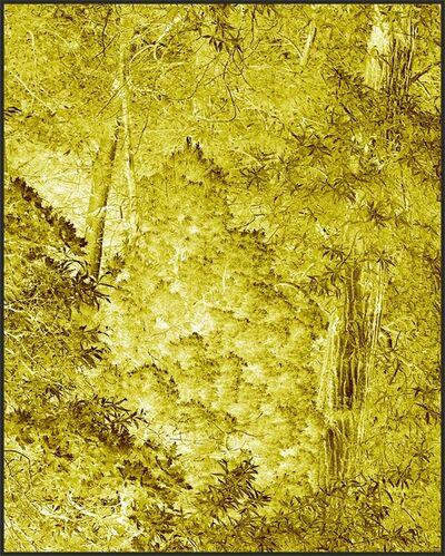 Clifford Ross, 'Harmonium X', 2008