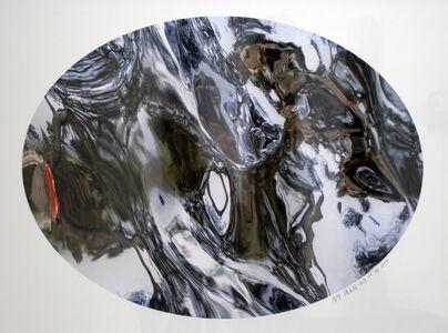 Zhan Wang 展望, 'Flowers in the Mirror, Beijing Series #6', 2004