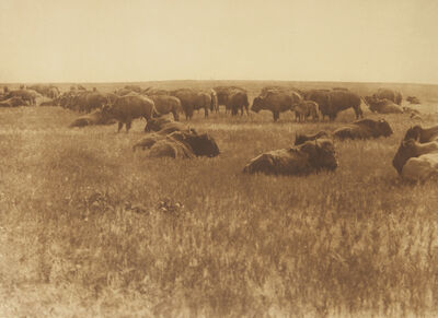 Edward S. Curtis, 'As It Was In The Old Days', 1907-1930