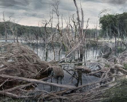 Nicholas Blowers, 'Pond Requiem', 2018