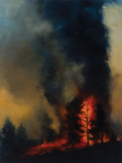 Karen Marston, 'Ring of Fire', 2016