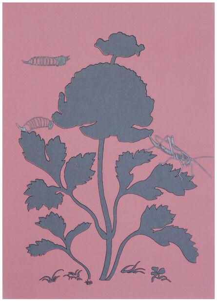 Joos van de Plas, 'Stolen Observations - Metamorphosis, Plate 7', 2020