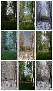 Jeffrey Blondes, 'Spring Autumn Summer Winter', 2015