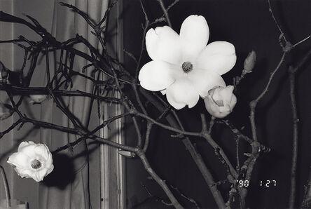 Nobuyoshi Araki, 'From the series Sentimental Journey / Winter Journey, 1990', 1990